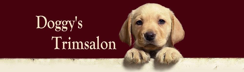contact met Doggy's Trimsalon